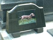 ペット用墓石の併設
